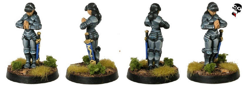 Tiriel Paladin in chrome armour from Hasslefree Miniatures painted by Neldoreth - An Hour of Wolves & Shattered Shields